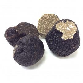 Truffe et truffe d'ete