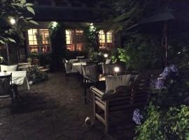 hortensia dans jardin