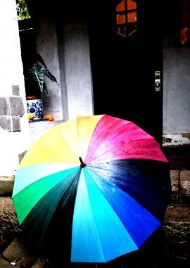 秋の長雨と傘
